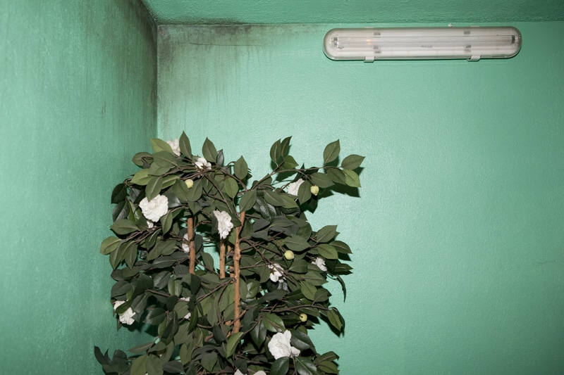 Bas fonds - documentaire club echangiste - rose-marie loisy photographe